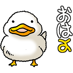 Sticker for duck lovers.