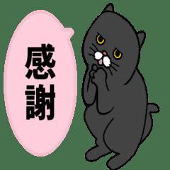 黒猫のアニメーションスタンプvo2