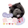 Xinjie_20200114
