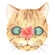 Capricious cats