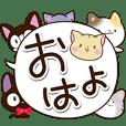 6 cute cats! (Speech balloon)