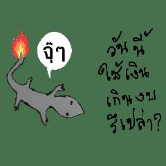 Burnt tail lizard
