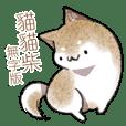 貓貓柴無字版