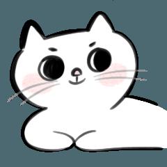 咪咪貓貓嗷嗷嗷