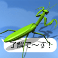Mantis on the smartphone (Ver. 02)