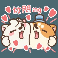 米犬日常 - 情人節特輯