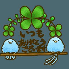 Happy blue bird every day2