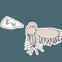 talking earless seal
