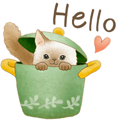 Cat sticker (English)