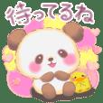 Baby Panda love