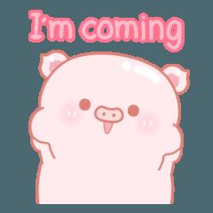 pink sweet pig