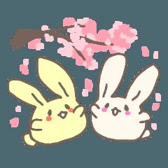 Graduation! Omochi Rabbit