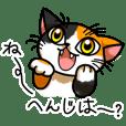 Japanese cat MI-KO!
