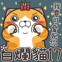 Lan Lan Cat 17