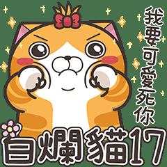 白爛貓17☆三八阿花一朵花☆