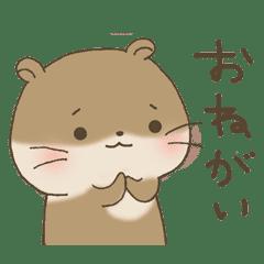 ゆる~いカワウソちゃん