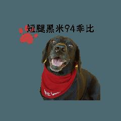 gauibiandann_20200126110452