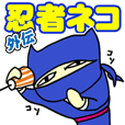A goofy Ninja Cat - Side Story -