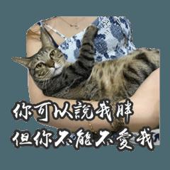 Yeh Szu Wen_20200127083956
