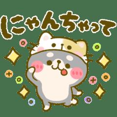 豆柴日和〜くろまめ♡だじゃれ〜