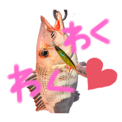 釣り❤️スタンプ