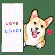 I LOVE CORGI  !