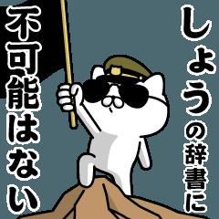 """SHOW""name/Military cat"