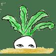 Vegetable stamp