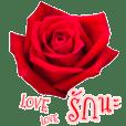 สนทนาภาษาดอกไม้ (ส่งรัก ส่งความสุข)