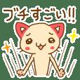 広島出身ネコ