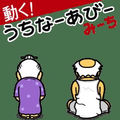 動く!うちなーあびー【沖縄方言】みーち改