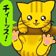 【ゆるゆる敬語】先輩チィーッス!