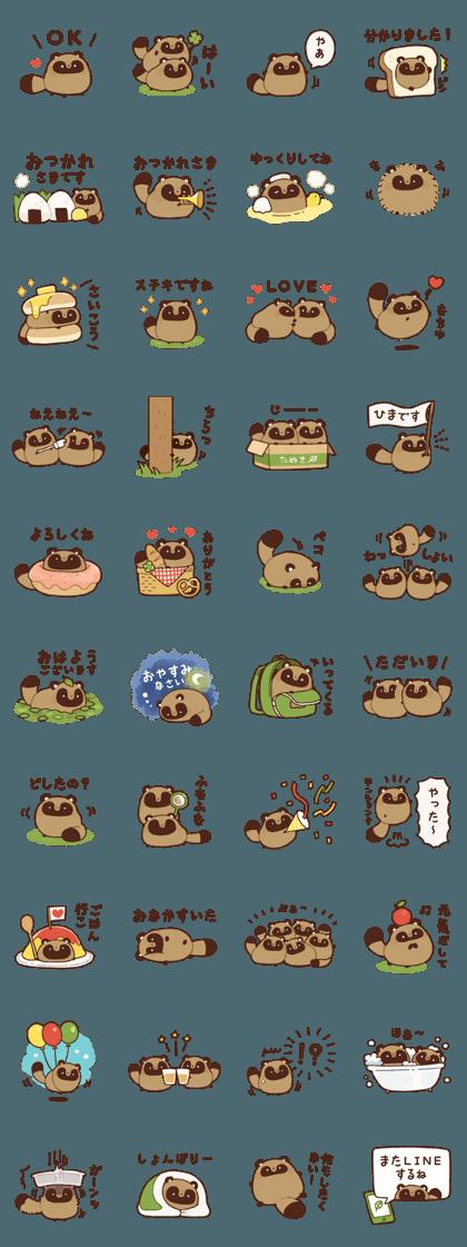 chubby raccoon dog