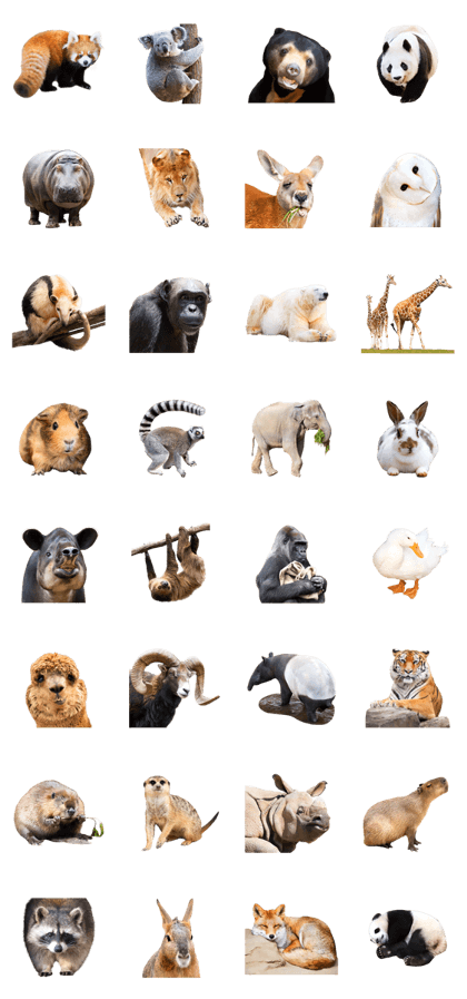 Cute animal photo stickers at zoo
