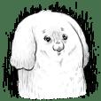 モフ缶の犬