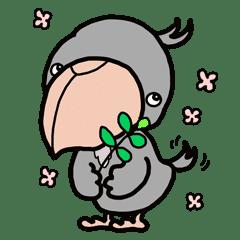 可愛いハシビロコウが気持ちを伝えます