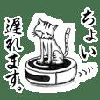 関西ローカル猫のベタな日常