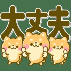 デカ文字♡豆柴ちゃん