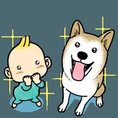 Baby and Shiba Inu