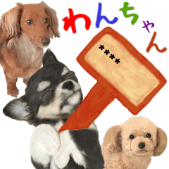 Various kinds of dogs gather