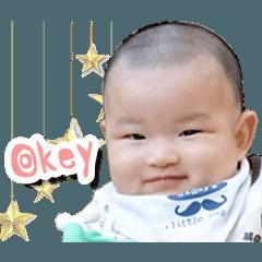 Little Ashi