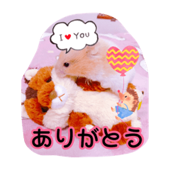 Honobono_20200207215108