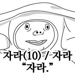Korean Softshell turtle