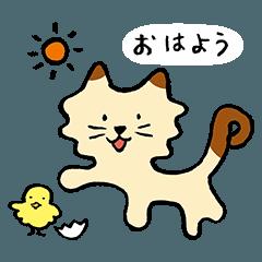 Pudding-cat