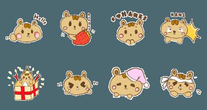 hamster san