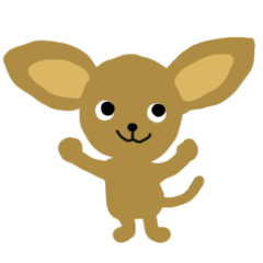 Chihuahua cyasuke