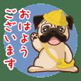 Pug パグ 普段使い(REMAKE)