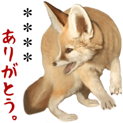 Living willful freely of the fox