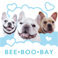 BeeBooBay cute in the air