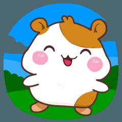 Cute Little Hams (Coco)